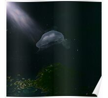 Jelly Fish Dreaming Poster