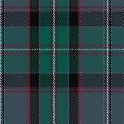 00608 Aberfeldy District Tartan Fabric Print Iphone Case by Detnecs2013