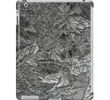 Frost 1 B&W iPad Case/Skin