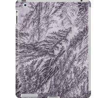 Frost 2 iPad Case/Skin