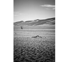Desolation Photographic Print