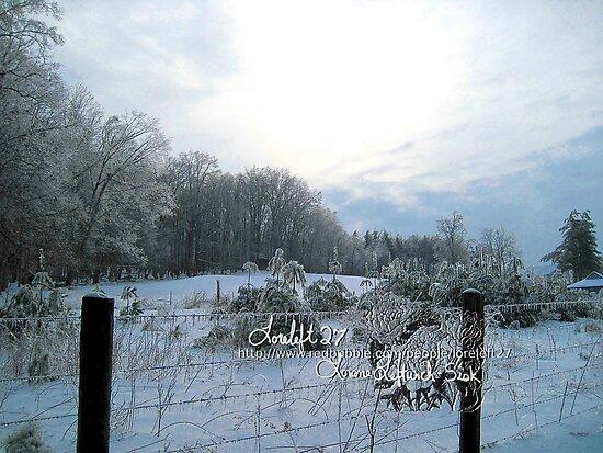 icecapade by LoreLeft27