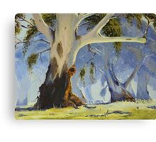My Mum's resting spot - oil painting Canvas Print