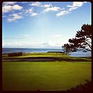 Golf Course in Victoria, British Columbia by Nadine Staaf