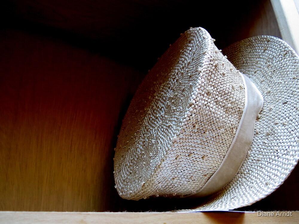 HAT...Tipsy by Diane Arndt