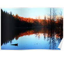 Late Day Sun on Late Fall TreeTops Poster