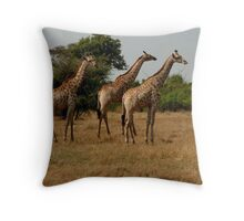 the rule of thirds Throw Pillow