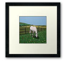 The Horse Framed Print
