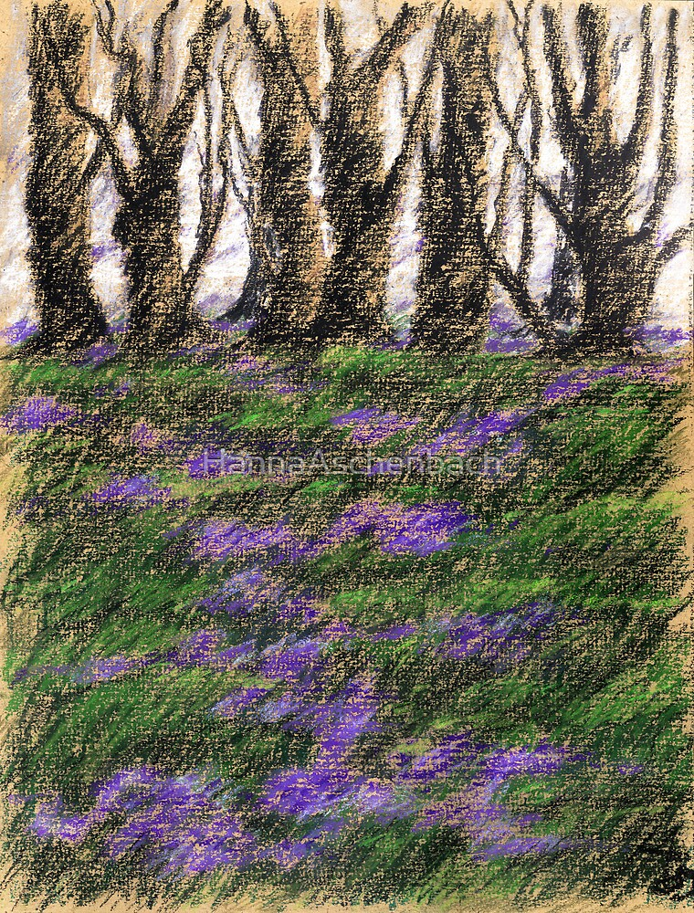 Veilchen im März by HannaAschenbach