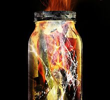 Mason's Jar by Alex Preiss