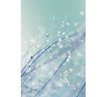 Dreamy Feather Drops Photographic Print