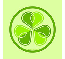 Irish clover Photographic Print