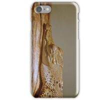 Caiman iPhone Case/Skin
