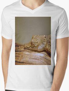 Caiman Mens V-Neck T-Shirt