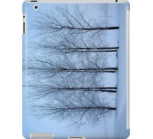 Winter Trees II iPad Case/Skin