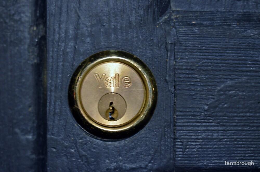TARDIS DOOR LOCK by farmbrough