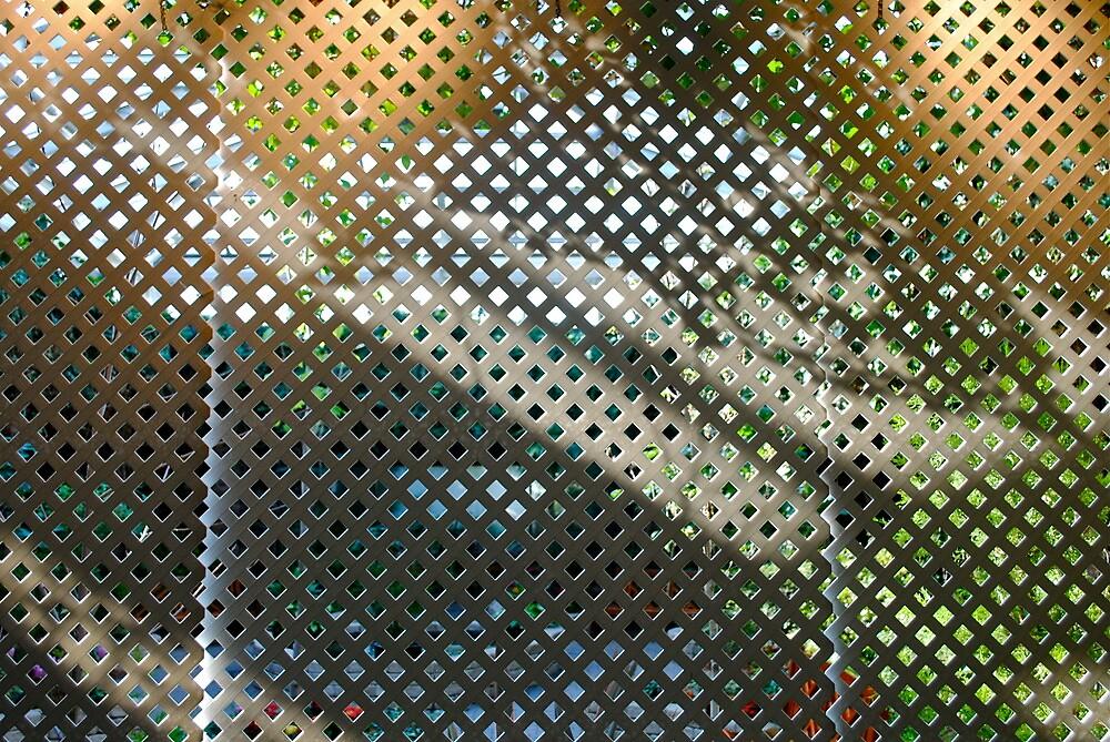 garden shadow  by richard  webb