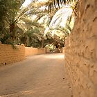 Al Qattara Oasis in Al Ain by Ian Mitchell