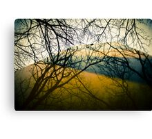 Reflector of Trees  Canvas Print