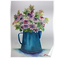 Pitcher Daisies Poster