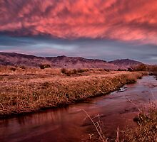 Owens River Sunset by Cat Connor