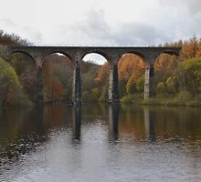 Armsgrove Viaduct On Wayoh Reservoir. by Dave Staton