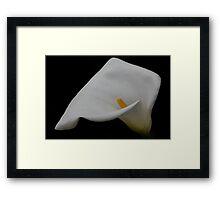 Jarro 2871 Framed Print