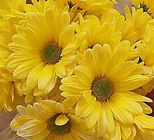 Supermarket Sunshine by Monnie Ryan