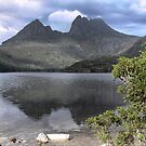 Cradle Mountain (2) by Larry Lingard-Davis