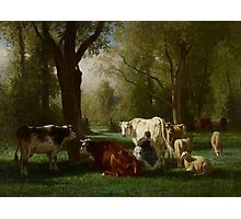 Landscape with Cattle and Sheep, 1852-8 Photographic Print