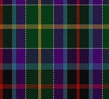 00663 Gala Water New District Tartan Fabric Print Iphone Case by Detnecs2013