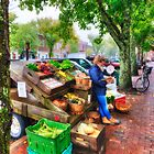 Nantucket Veggie Girl by Bruce Taylor