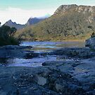 Cradle Mountain (5) Lake Lila by Larry Lingard-Davis