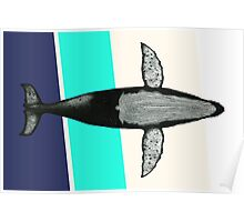 Gone Whale  Poster