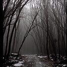 Mountain Path by supercujo