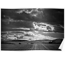 Stormy summer over wheat field Poster