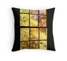 A Window View Throw Pillow