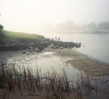 landscape in fog by Barbara Fischer