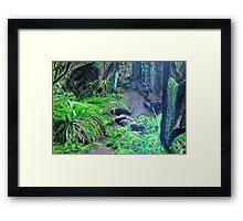 Enchanted Forrest Framed Print