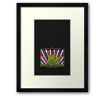 Mexico Veteran VRS2 Framed Print