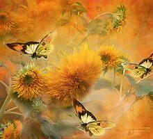 Sunflowers & Butterflies by Carol  Cavalaris