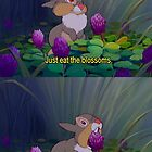 thumper loves his blossoms by shoshgoodman