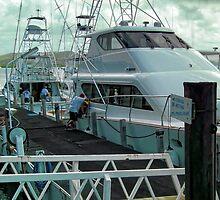 Marlin Fishing by V1mage