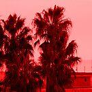 Santa Monica Panorama by infiniteartfoto