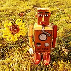 Robot got you a flower. by Kyran and Lyndsay Weir
