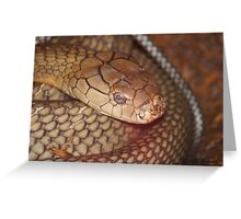 You Are Too Close! Greeting Card