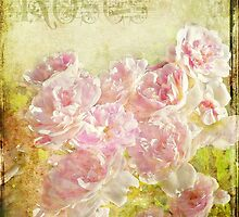 Rose Garden by EvaMarIza