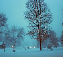 An evening in winter. by Dipali S