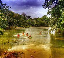 Mopan River in Bullet Tree Village - Belize, Central America by Jeremy Lavender Photography