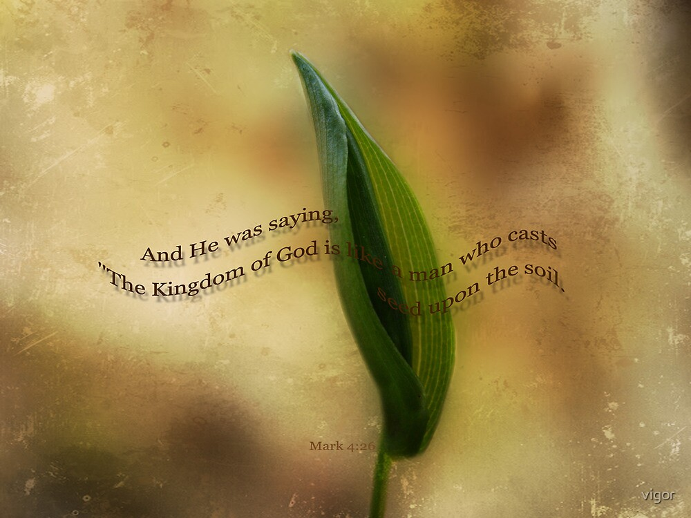 The kingdom of God-Mark 4:26 by vigor